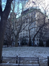 Washington Square Park was originally a cemetery, but was bought by the city and made into a public park in the 1820s.