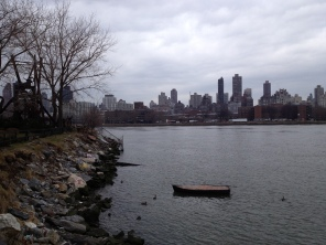 A view of Manhattan from Socrates Sculpture Park