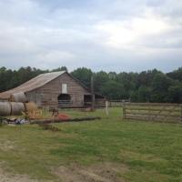Livin' the farm life and the coastal life