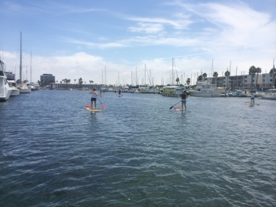 Paddleboarding in the marina
