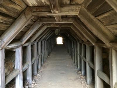 Partington Cove Tunnel
